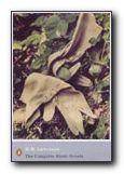 D.H.Lawrence - The Short Novels