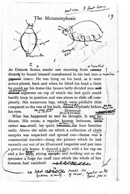 Vladimir nabokov critical essays
